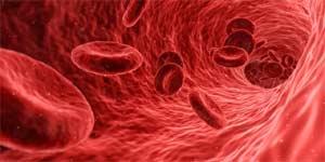 Blutfluss - Heimtrainer